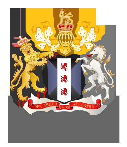 Logo Patel Plastic Surgery BCK Patel MD